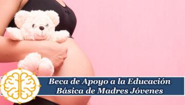 Beca de Apoyo a la Educación Básica de Madres Jóvenes y Jóvenes Embarazadas